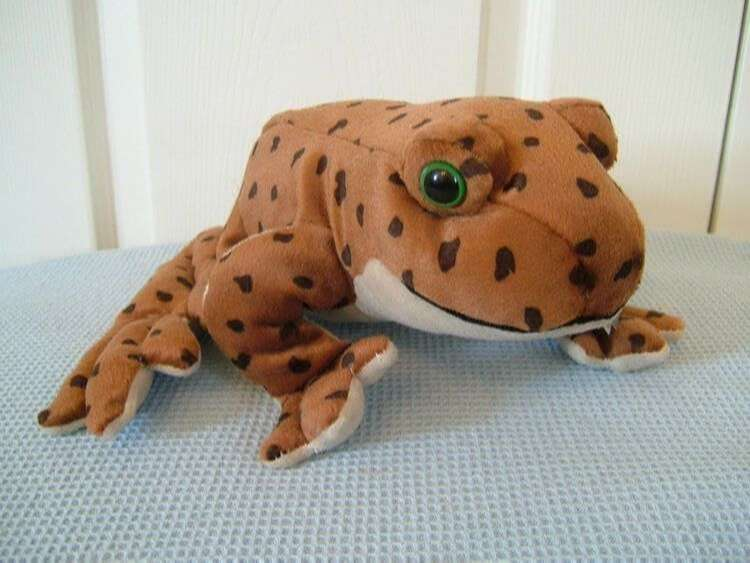 Soft Toy Frogs and Toads - Cuddly Toy Frogs